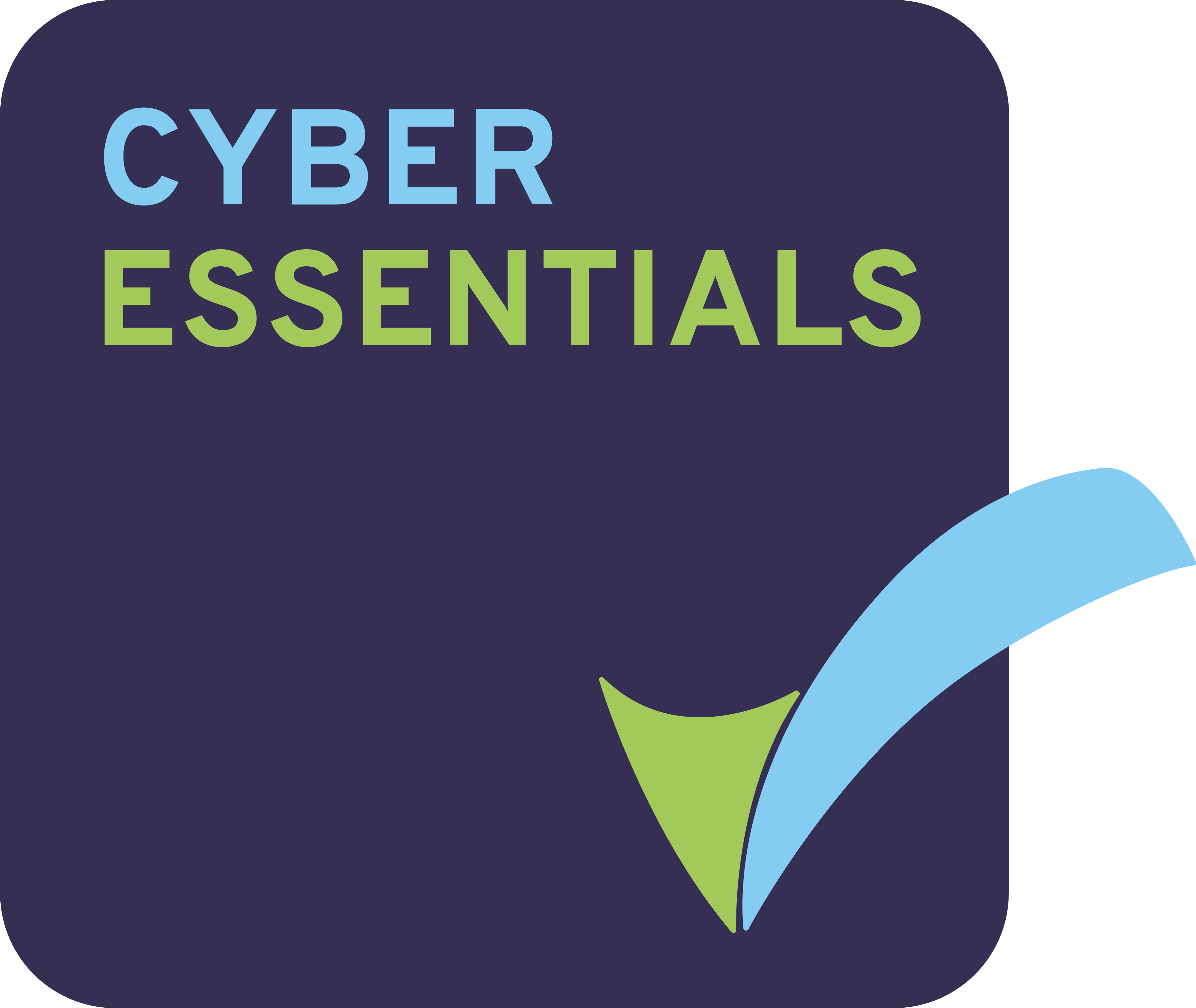 cyber-essentials-badge-high-res-1
